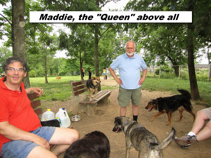 "Maddie, The ""queen"" above all"