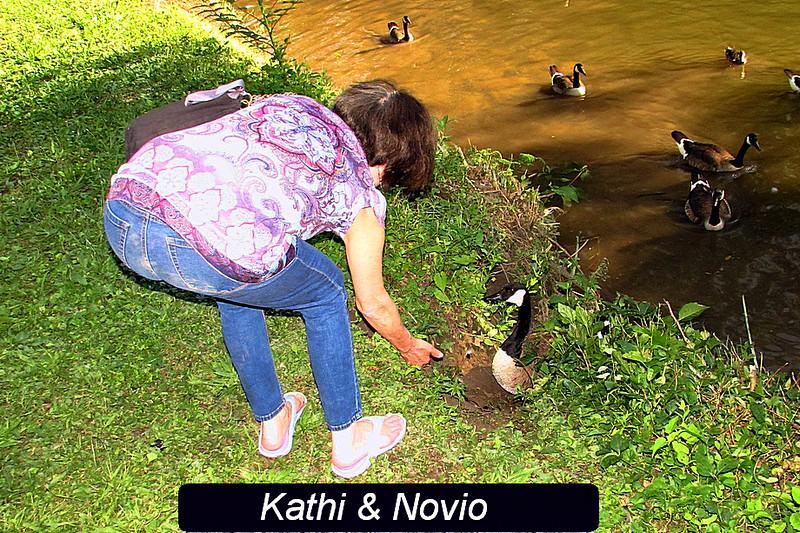 Novio, canal, goose, kathi, 2, FB