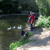 children big guy goose ducks, maddie