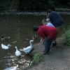 children big guy goose ducks, 2