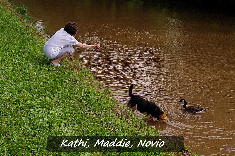 novio, maddie, canal, treats, kathi, 5, FB