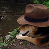 Maddie, hat, canal, towpath, FB