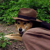 Maddie, hat, canal, towpath, 2