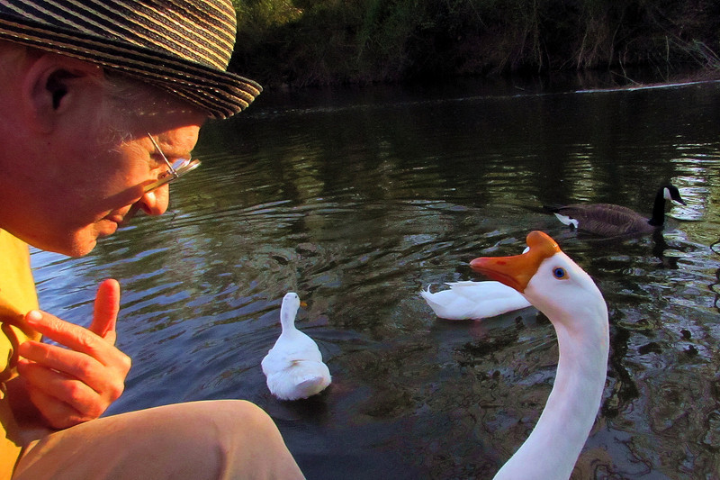 Me, marty, big guy, goose, portrat, canal, FB