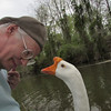 Me, marty, big guy, goose, canal, portrait, original