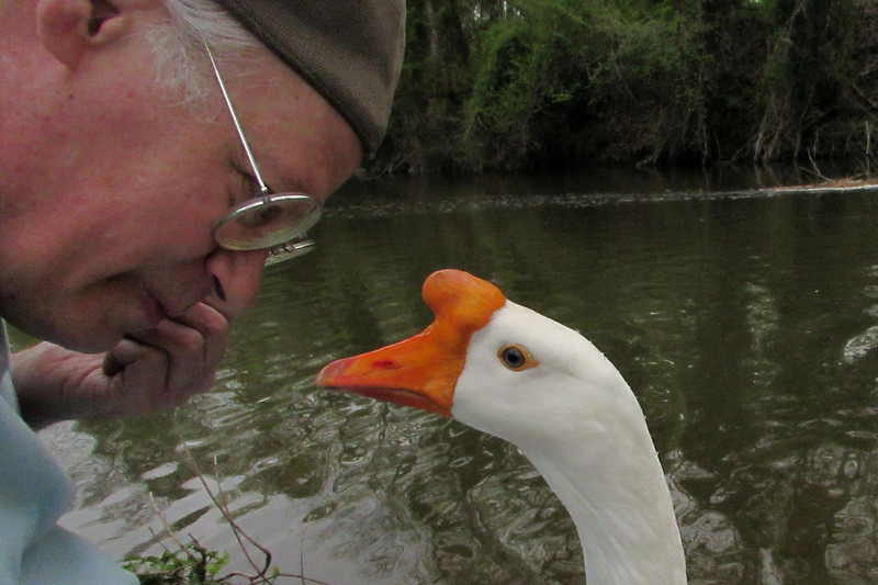 Me, marty, Big guy, goose, canal, 3