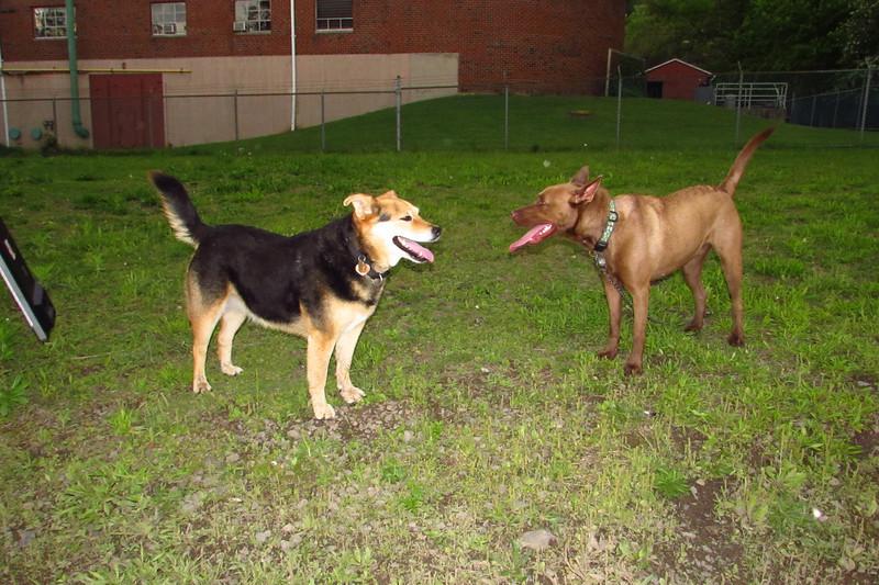 Jake, boyfriend, Maddie, towpath