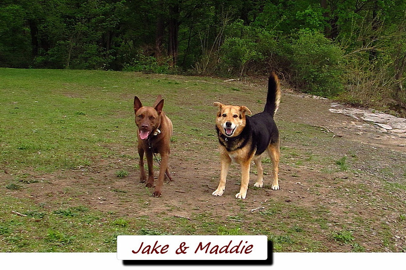 Jake, Maddie, towpath, FB TEXT