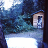 1958 (Aug) - Photo taken from the porch of the cabin looking toward the wood shed - Cabin on the Naches River - Cliffdell, WA - From the Byron W. Yaden 35MM Slide Collection