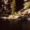 1958 (Aug) - Across the river from the cabin on the Naches River - Cliffdell, WA - From the Byron W. Yaden 35MM Slide Collection