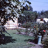 1962 (Sept) - At the home of Aunt Gert (the woman working in the garden) - Los Angeles, CA - From the Byron W. Yaden 35MM Slide Collection