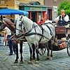 Horse and carriage at the quaint village of Szentendre.
