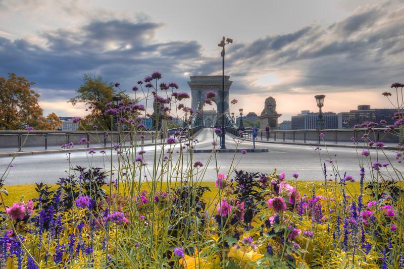 Flowers At The Chain Bridge