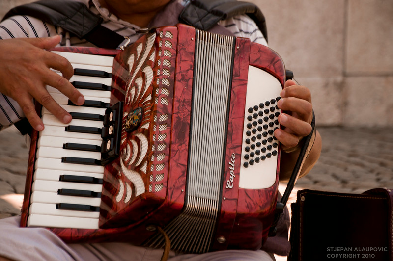 Hungarian Accordion Player