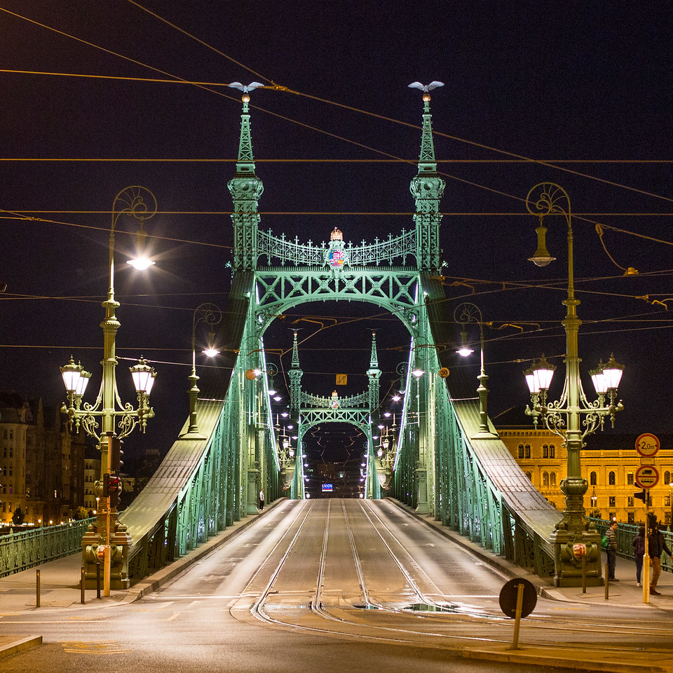 In the central line of Liberty Bridge Budapest