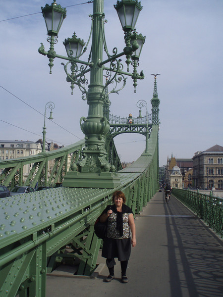 On the Liberty Bridge over the Danube river