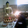 Preparing the buddhas
