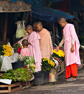 Nuns At Flower Stand