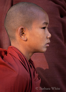 Young Monk's Profile