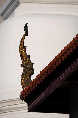 Phra Ubosot, Wat Pathum Wanaram