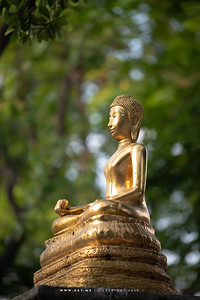 Buddha Statue, Racha Yatana, Wat Suthat Thepwararam