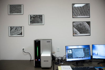 Buehler Biomedical Imaging Lab
