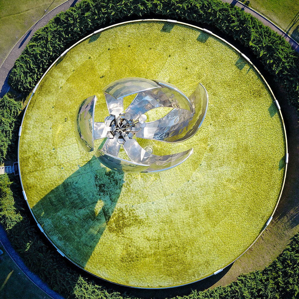 Floralis Generica from Above