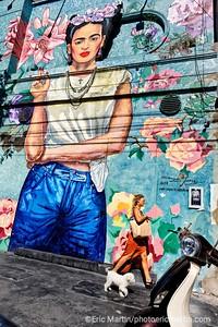 ARGENTINE. BUENOS AIRES. QUARTIER DE PALERMO. Graffittimundo, circuits street art dans Palermo. fresque murale représentant Frida Khalo