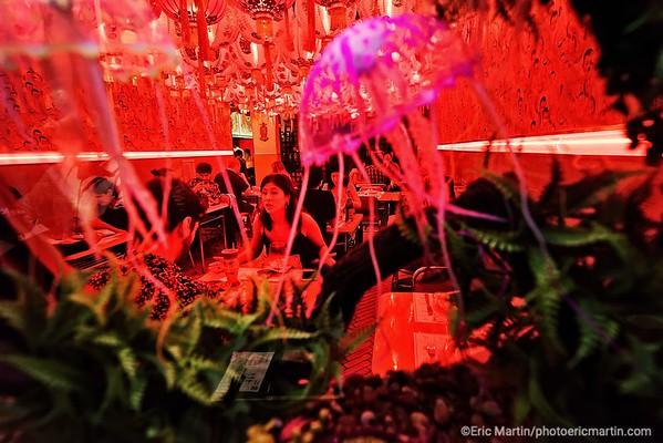 ARGENTINE. BUENOS AIRES. QUARTIER DE PALERMO. Restaurant Nino Gordo.   Un grill asiatique kitschissime avec aquariums où flottent des méduses.