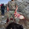 Umatilla Buffalo Hunter