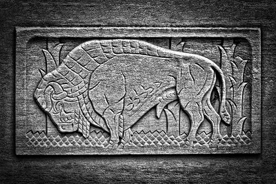 Buffalo Architectural Stone Relief