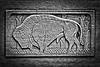 Buffalo Architectural Stone Relief