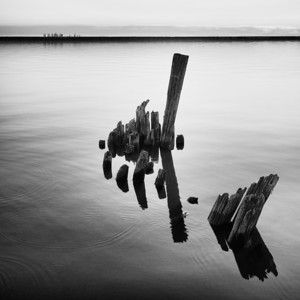 Dock Remnants | Lake Erie - Buffalo NY