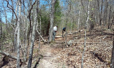 Wilderness Volunteers: 2016 Buffalo National River Service Trip