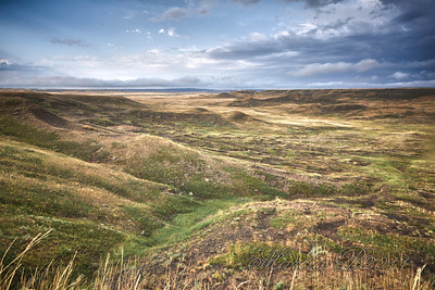 "Buffalo country. Looking down the Laouenan Coulee toward the Frenchman River and beyond to the ""Medicine Line"" and Montana. There is a buffalo bull out there having his breakfast but he shows only as a little speck in the distance."