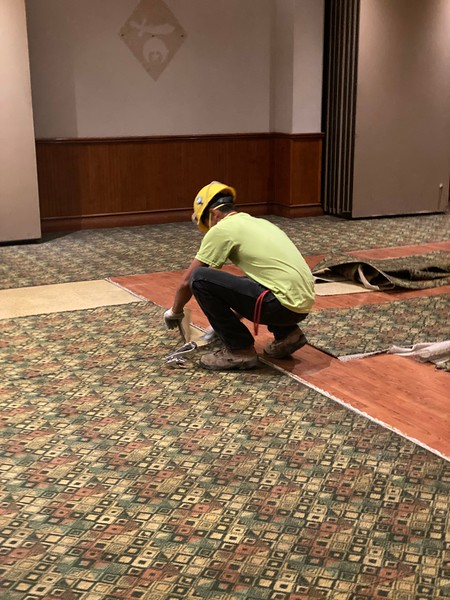 Oasis carpet removal