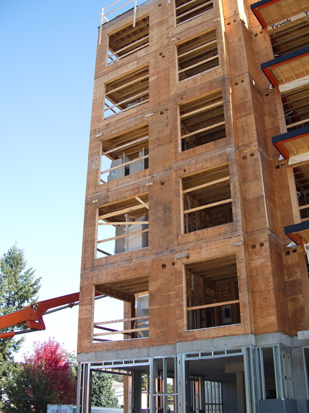 Langford Mid-Rise Wood Tour
