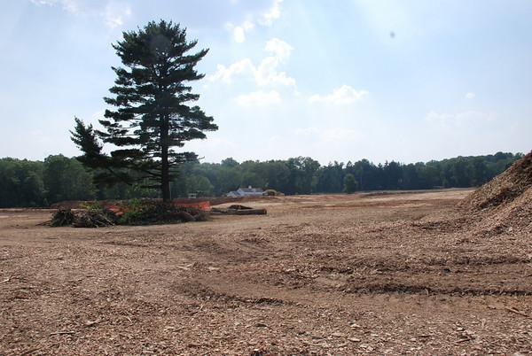 Fields Project Update