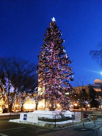 Edmonton City Hall Christmas Tree January 2013