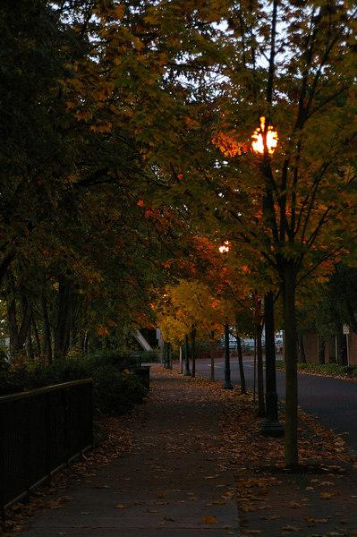 October evening colors