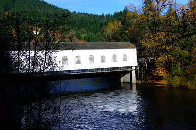 Goodpasture Road Covered Bridge - Oregon Travel Photography - USA
