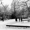 Campus Scenes, Winter 1988