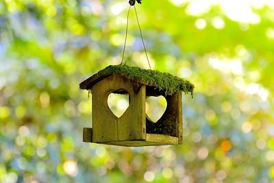 Birdhouse, Stubbs island  Tofino B.C.
