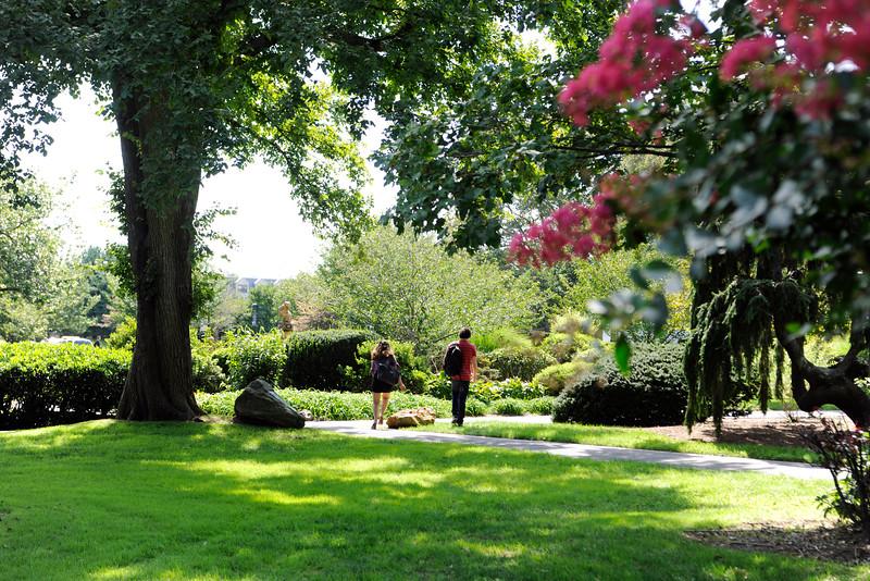 Students walking on Adelphi's lush green campus.