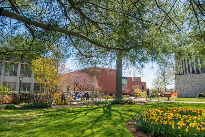 In the springtime Adelphi's entire campus is in bloom.