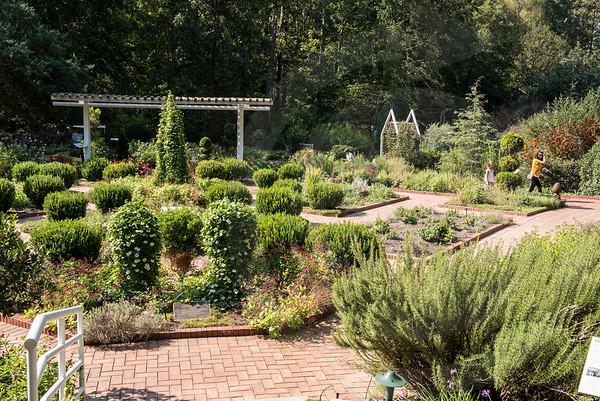 Athens_Botanical Gardens_4257