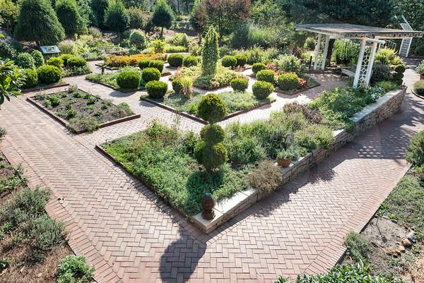 Athens_Botanical Gardens__4115