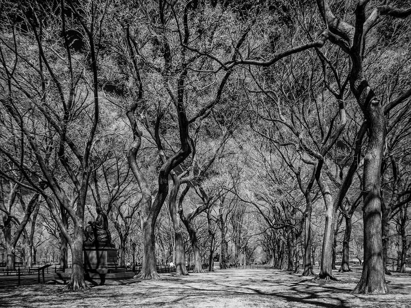 NYC2014-2801-Edit
