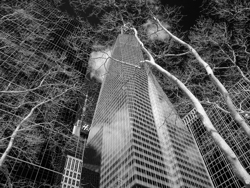 NYC2014-0336-Edit