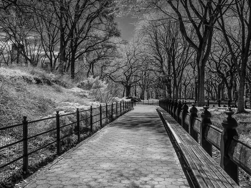 NYC2014-2828-Edit